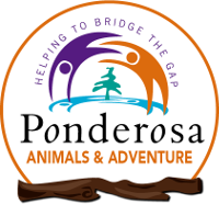 logo of Ponderosa zoo